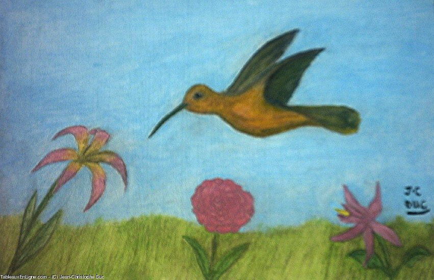 Artwork >> Jean-Christophe Duc >> humming-bird