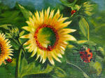 Denise Gagnon - Sunflowers up and  Ladybugs