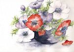 Marie-Claire Houmeau - The Anemones