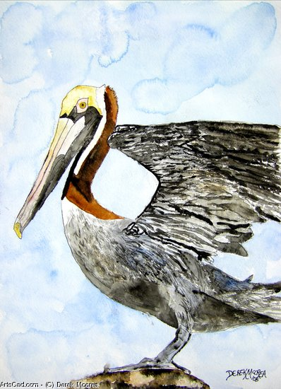 Artwork >> Derek Mccrea >> Pelican 4
