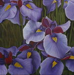 Angela Coleman - Blue Irises