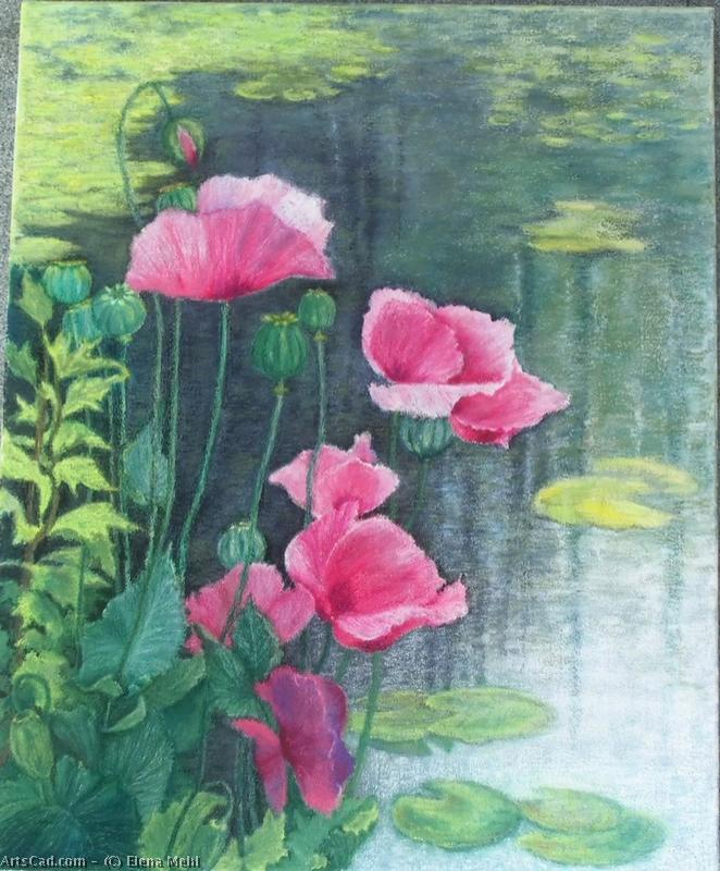 Artwork >> Elena Mehl >> Poppies
