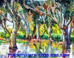Baruch Neria-Kandel - Eucaliptuses in the pond