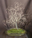 Sal Villano Wire Tree Sculpture - SMALL BONSAI ELM - Wire Tree Sculpture, by Sal Villano