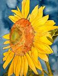 Derek Mccrea - sunflower macro floral folk art