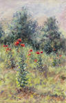 Sinyavsky Dimitri - The field with poppies