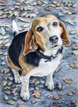 Arts And Dogs - Beagle Nanni