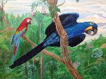 Ruth Miriam Da Natureza - MACAW BLUE AND RED
