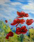 Sylviane Petit - Poppies at there  dragonfly