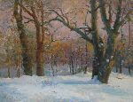 Victor Onyshchenko - Winter in the wood