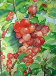 Ghislaine Giustiniani - The Currants