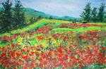Heritier-Marrida - Field of Poppies up in  Corsica