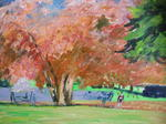 Impressionist Gallery - Cornwall Park in summer