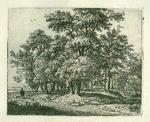 James Stow - Rare  Anthony Waterloo  -Beech Grove-   Etching