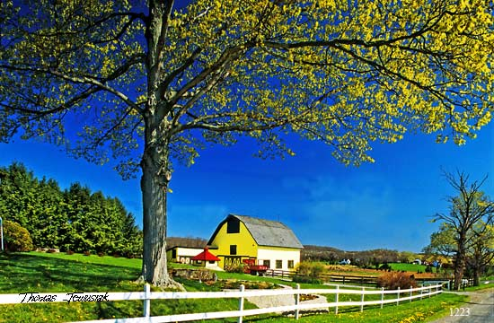 Artwork >> Thomas Jewusiak >> American Country Barn