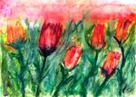 Derek Mccrea - Tulips watercolor painting