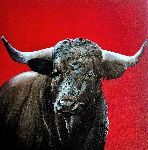 Tomas Castaño - Angry bull upon  red up