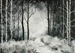 Jean-Claude Selles Brotons - The Forest from Silver Birches