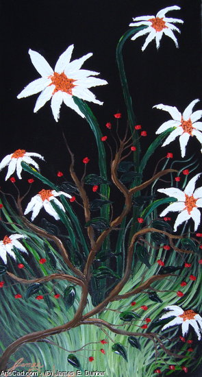 Artwork >> James E. Dunbar >> African White Daisies With Red Berries