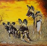 Val Odendaal - Wild dog family.
