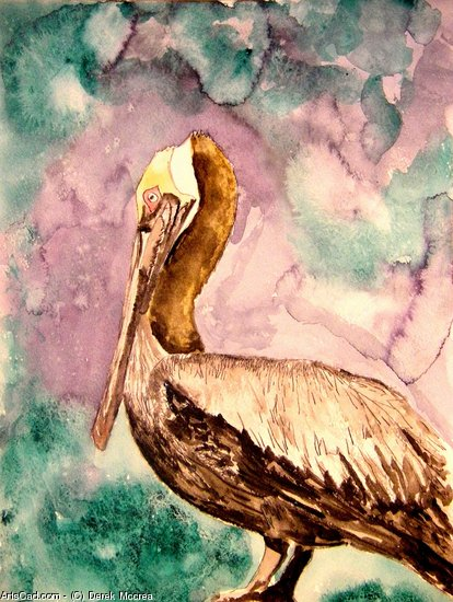 Artwork >> Derek Mccrea >> Pelican