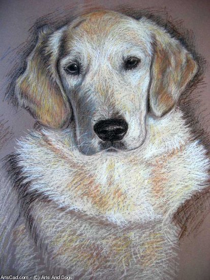 Artwork >> Arts And Dogs >> Golden Retriever Oilpastel