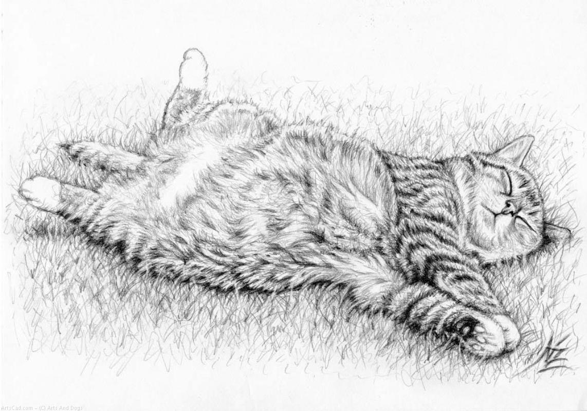 Artwork >> Arts And Dogs >> Relaxing Cat