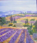 Eliane Vieil - Lavenders of  tall  Alps