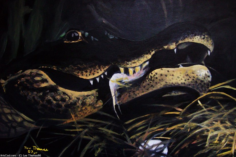 Artwork >> Lee Thomas86 >> ALLIGATOR