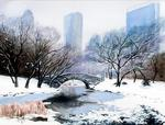 Phil Hilton - Central Park in Winter