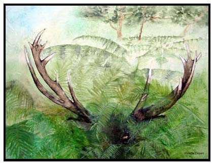 Artwork >> Ginette Doyen >> deer hidden