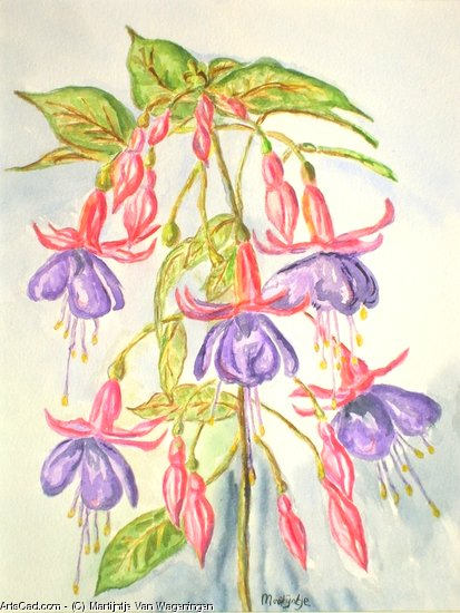 Artwork >> Martijntje Van Wageningen >> Foot fuchsia