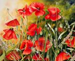 Marie-Claire Houmeau - Mishmash of poppies