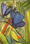Andrée Schindler - butterfly with blue