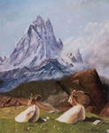 Jean-Claude Selles Brotons - the goats faced at l-ossau