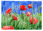 Jean-Jacques Monot - Poppies in